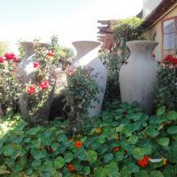 Thaba Tshwene Overview pics (53)